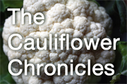 All cauliflower recipes
